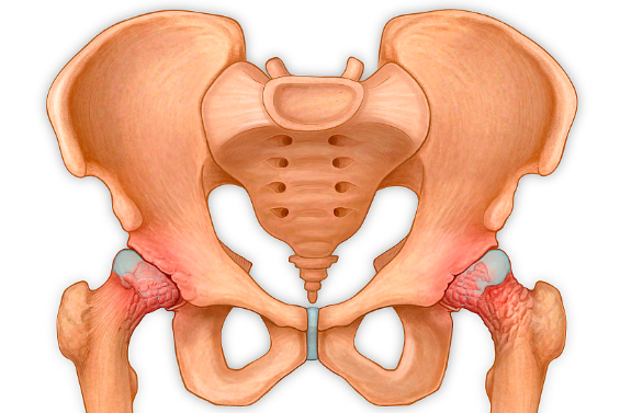 产后骨盆容易出现什么问题?骨盆恢复不好有什么症状? (图1)